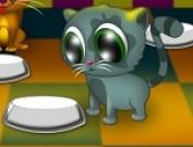 لعبة مطعم القطط