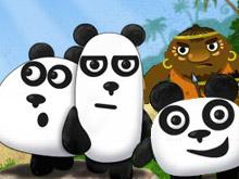دببة الباندا الثلاثة في الليل