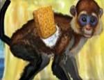 لعبة تنظيف القرد 2014